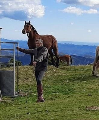 Joan Moret - ramader i president de laFederació d'Associacions de Criadors de Cavall Pirinenc Català.