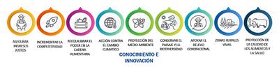 El Ministeri d'Agricultura, Pesca i Alimentació publica tota la informació relativa al Pla Estratègic d'Espanya per a la PAC post 2020.
