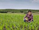 El Planter, l'oficina virtual que t'ajuda a incorporar-te al sector agroalimentari i rural