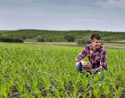 El Planter, l'oficina virtual que t'ajuda a incorporar-te al sector agroalimentari i rural.