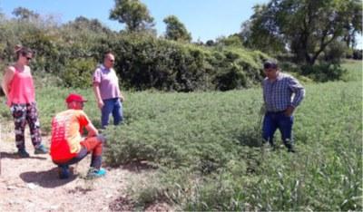 """Els Cupons d'Innovació """"BCN Smart Rural"""" impulsen 4 nous projectes d'innovació agroalimentària a la Catalunya Central."""