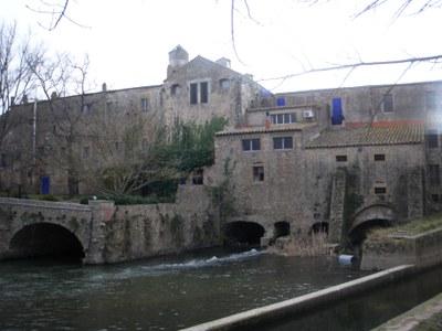 Èxit de participació en la visita a les Masies del Baix Empordà .