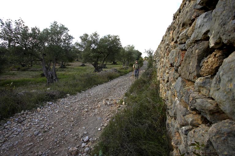 Camins d'Itinerànnia de la comarca de l'Alt Empordà (Itinerànnia)