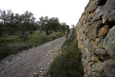 Camins d'Itinerànnia de la comarca de l'Alt Empordà (Itinerànnia).