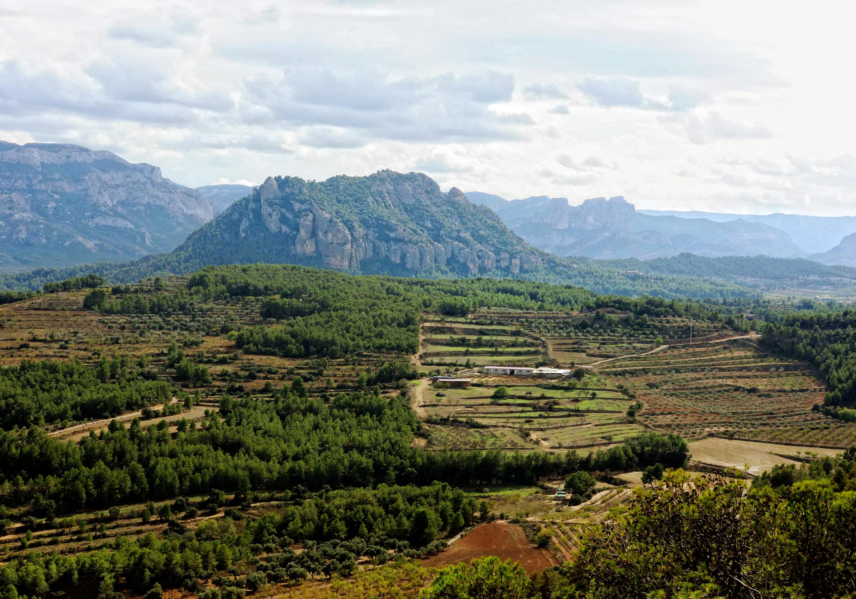 Muntanya de Santa Bàrbara - Horta de Sant Joan (Consorci Intercomarcal d'Iniciatives Socioeconòmiques)