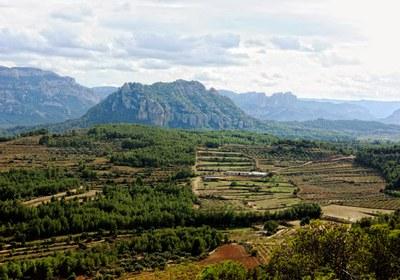 Muntanya de Santa Bàrbara - Horta de Sant Joan (Consorci Intercomarcal d'Iniciatives Socioeconòmiques).