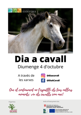 Cartell-Dia-cavall.png.